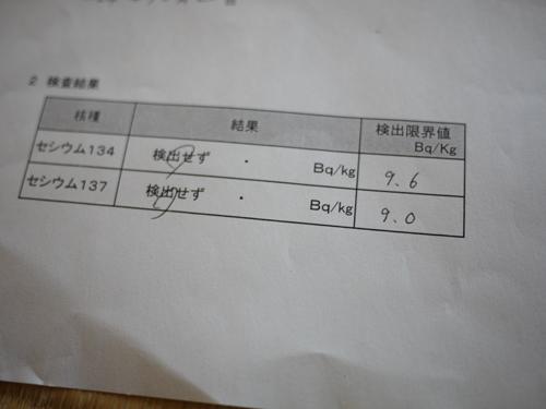 P1040327.jpg
